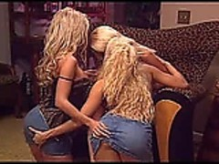 Krystal Steal, Nikki Benz, Gina Lynn