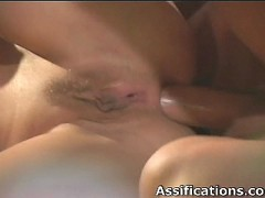 Wild chick sucks cock and gets ass fucked