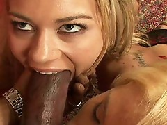Melanie & Brittany titty fight to have pounded by a monster cock.