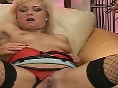 Whore inside stockings sucking cock