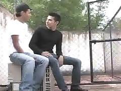 Free gay movs of flapping fag latinas