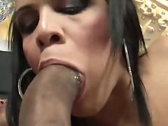 Ass fucked tranny slut