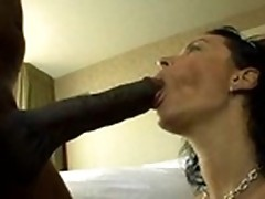 Ebony chick Bailey Brooks gobbles dick then gets banged doggystyle from behind