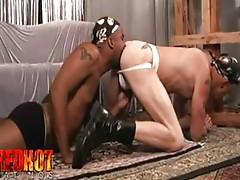 Gay Porn Gay Sex