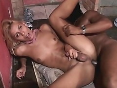 Horny brunette gets pumped by buff stud