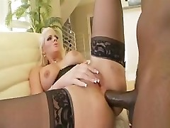 Hot Blonde Phoenix Marie Gets Her Phat Ass Fucked Hard By A BBC