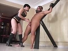 Hot brunet dominatrix crucifies man with fat cock