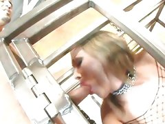 Mandy Bright suck cock while in the cage