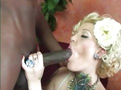 Naughty Candy Monroe slurps on this throbbing cock