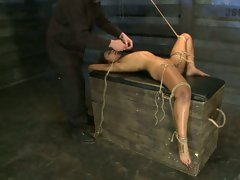 Amazing Skin Diamond shows great stamina for pain