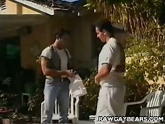 Buffed cub stroking with brett williams and giorgio falconi