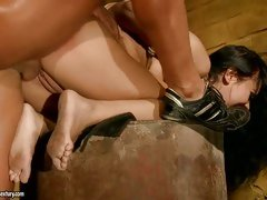 Sexy Nilla gets fucked so good she starts screaming and moaning and cums