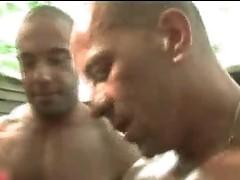 Benjamin Stark, Luc Bonay, Pier gay scene