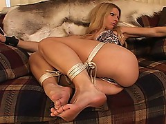 Hogtied and feeble