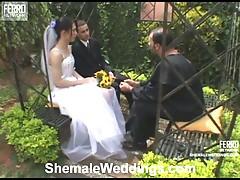 Suzuki irresistible shemale bride