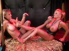 Busty bitches worship feet