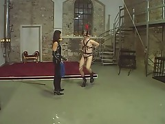 Brunette mistress forces dude in bondage to trot like a horse