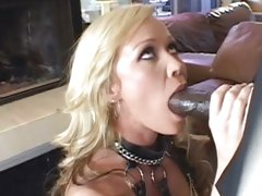Sizzling Austin Taylor wraps her live round a huge cock