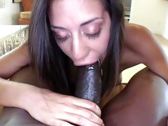 Layla Storm suck hard the black monster cock