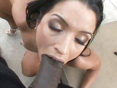Lex Steele and Monica Santhiago get oral fuck
