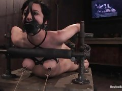 Cherry Torn tied up and gagged while having her nipples pulled as torture