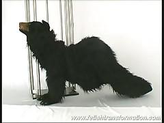 Crazy  sandra is turned into a bear !
