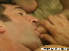 Gay studs suck cock and in hot 69