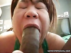 Asian Interracial Blowjob