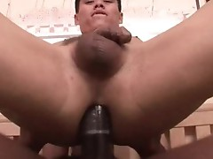 Free internet porn monster cocks