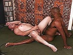 Two bears with huge cocks