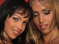 2 Gorgeous Shemales Fuck Each Other