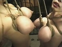 Japanese Breast Suspension