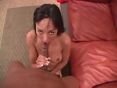 Nasty porn star Cytherea sucks black cock