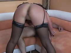 Assful babe Phoenix Marie rammed anally