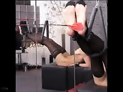 Queensnake BDSM O Sole Mio